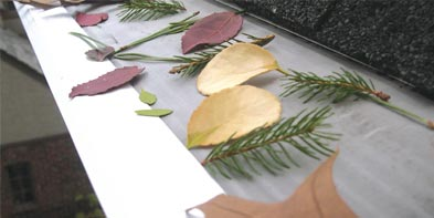 leaf guards on gutters
